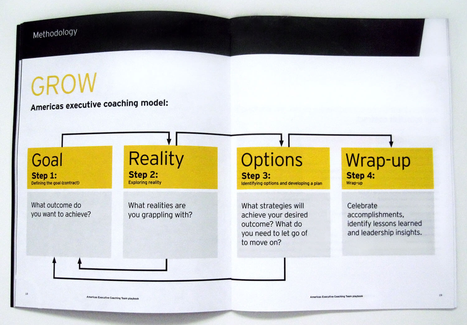 Ernst & Young Brochure Spread and Infographic Design